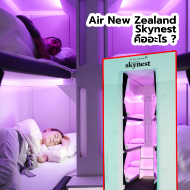 air-new-zealand-skynest